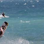 Disfruta de todo lo que ofrecen las playas de Alicante durante el verano 2014