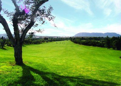 El Plantio Golf