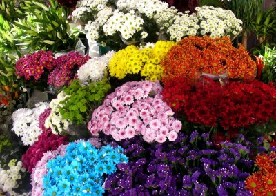 mercado_flores_1000px_DSC06495