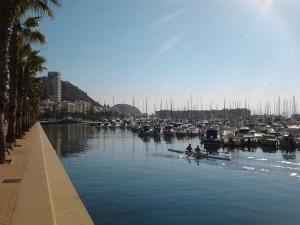 paseo puerto