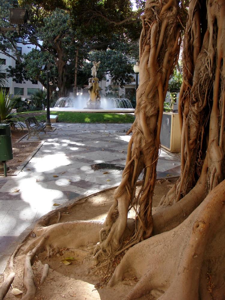 plaza gabriel miro 6