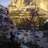 Conoce Alicante de la mano de Tortuga Tours y sus visitas teatralizadas nocturnas
