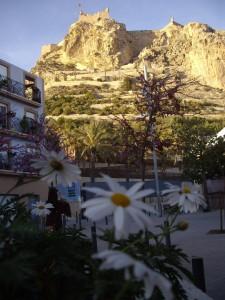 Visita teatralizada por el Casco Antiguo con Tortuga Tours @ Tortuga Tours  | Alicante | Comunidad Valenciana | España