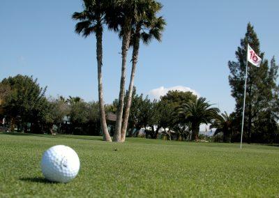 El plantio golf (11)