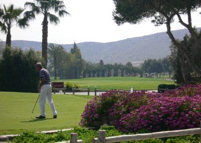El plantio golf (21)