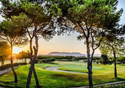 El plantio golf (3)