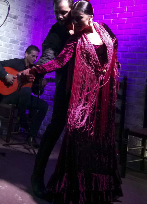 Espectáculos de Flamenco en Tablao Flamenco Luceros 16